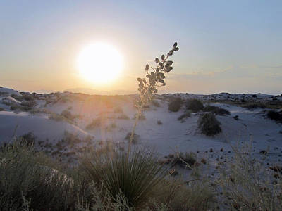 White Sunset Print by Mike Podhorzer