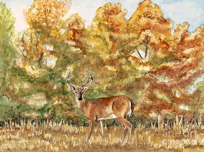 White Tail Buck In The Ozarks  Original by Patty Vicknair