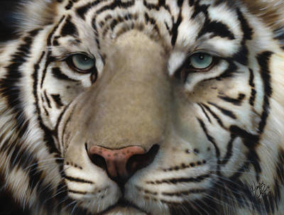 Endangered Species Painting - White Tiger - Up Close And Personal by Wayne Pruse