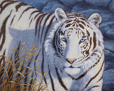 Bengal Tiger Painting - White Tiger - Crystal Eyes by Crista Forest