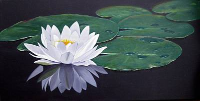 White Water Lilly Print by Birgit Coath