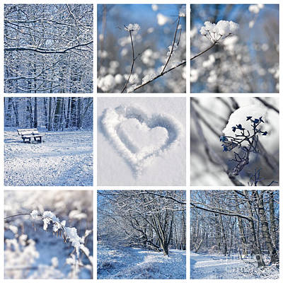 Mosaic Photograph - White Winter by Delphimages Photo Creations