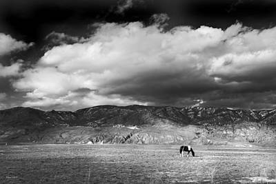 Wide Open Spaces Print by Theresa Tahara