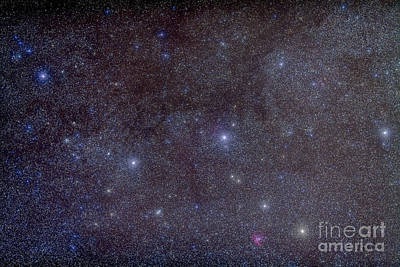 Widefield View Of The Constellation Print by Alan Dyer