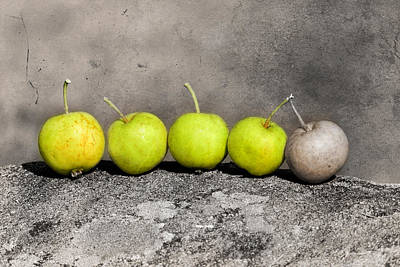 Wild Apples On A Stone Original by Toppart Sweden