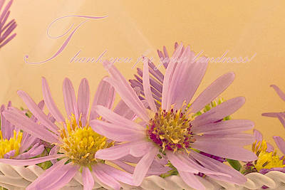 Aster Photograph - Wild Asters - Thank You For Your Kindness Card by Sandra Foster