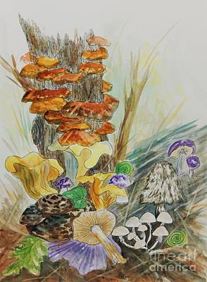 Fungi Mixed Media - Wild Edible Mushrooms by Ellen Levinson