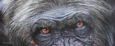 Chimpanzee Mixed Media - Wild Eyes - Chimpanzee  by Carol Cavalaris