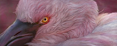 Flamingo Mixed Media - Wild Eyes - Flamingo by Carol Cavalaris