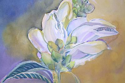Wild Flower Turtle Head Original by Mindy Newman