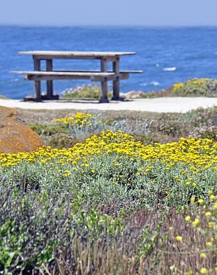 Wild Flowers Along Pacific Coast Highway Print by Caroline Stella