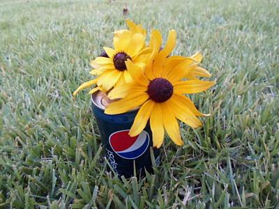 Photograph - Wild Flowers by Jenna Mengersen