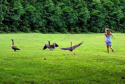 Geese Digital Art - Wild Goose Chase by Kristin Elmquist