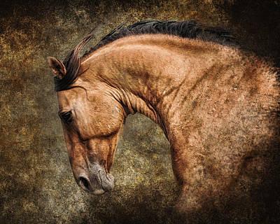 Wild Heart Print by Ron  McGinnis
