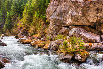 Wild Mountain River Print by Pati Photography