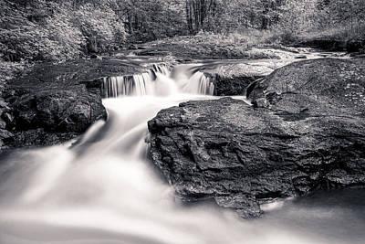 Forest Photograph - Wilderness River by Ari Salmela