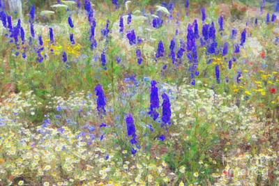 Friendly Digital Art - Wildflower Watercolour by Tim Gainey
