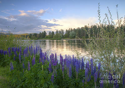 Wildflowers On The River Print by Idaho Scenic Images Linda Lantzy