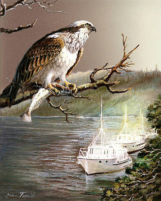 Osprey Painting - Wildlife Ospey Fishing Competition by Regina Femrite