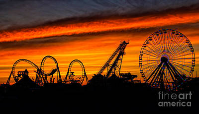 Coaster Photograph - Wildwood At Dawn by Mark Miller