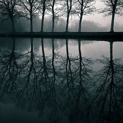 Solitude Photograph - Wilhelminapark by Dave Bowman