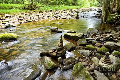 Williams River Headwaters Zen Rocks Print by Thomas R Fletcher
