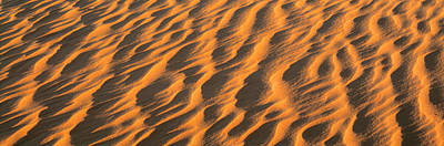Wind Blown Sand Tx Usa Print by Panoramic Images