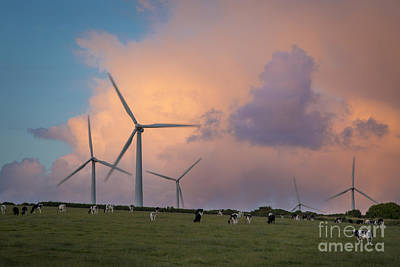 Bodmin Photograph - Wind Farm by Brian Jannsen