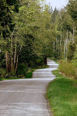 Hornby Island Photograph - Winding Your Way Home by Annie  DeMilo