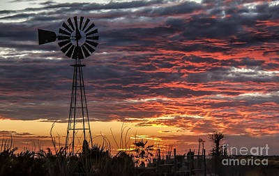 Windmill And The Sunset Print by Robert Bales