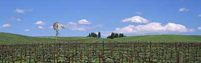 Vineyard In Napa Photograph - Windmill In A Vineyard, Napa County by Panoramic Images
