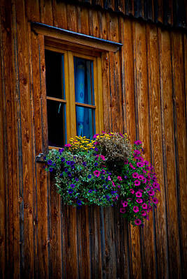 Hallstatt Photograph - Window Box by David Waldo