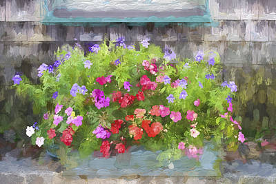 Window Box Painterly Effect Print by Carol Leigh