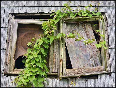 Window Shade 2 Print by Jeffrey Platt