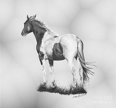 Custom Horse Portrait Drawing - Winds Of Change by Marianne NANA Betts