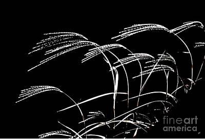 Windswept Grasses Print by Gerlinde Keating - Galleria GK Keating Associates Inc