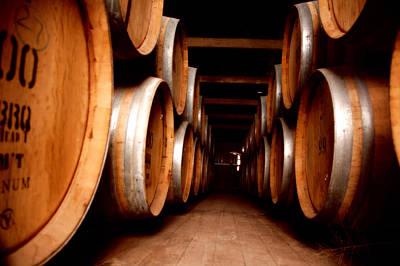 Wine Cellar Photograph - Wine Barrels by David Hancock