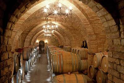 Winemaking Photograph - Wine Barrels In A Winery by Peter Menzel