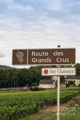 Wine Route Sign In France Print by Patricia Hofmeester