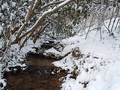 Winter At The Creek Print by Jean Blackmer