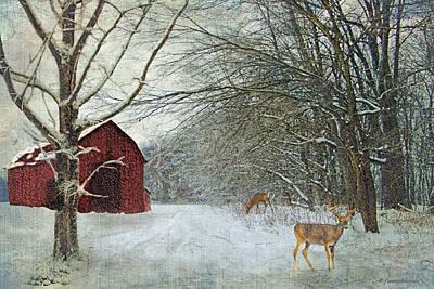 Barns Digital Art - Winter Barn by Lianne Schneider