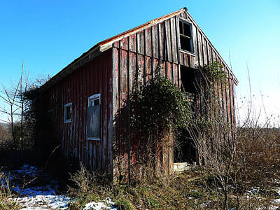 Winter Barn Print by Richard Reeve