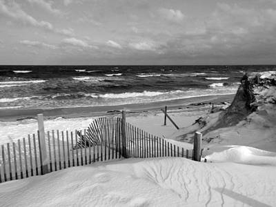 Winter Beach Print by Dianne Cowen