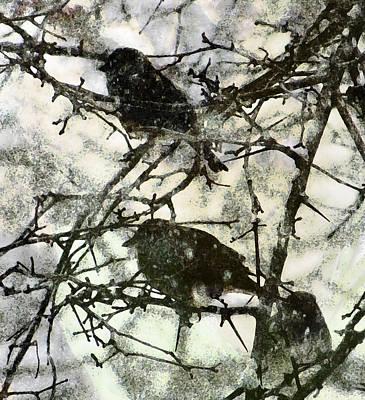 Winter Birds Print by John Goyer