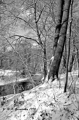 Print featuring the photograph Winter By A Pennsylvania Stream by A Gurmankin