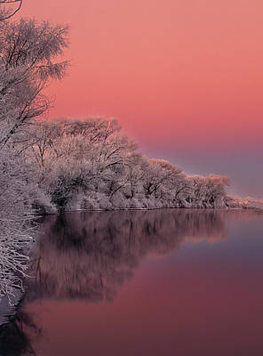 High Quality Photograph - Winter Color by Leland D Howard