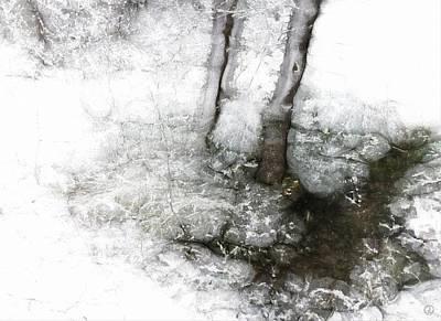Winter Creek Print by Gun Legler