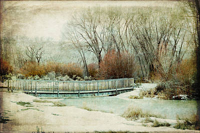 Daysray Photograph - Winter Days by Fran Riley