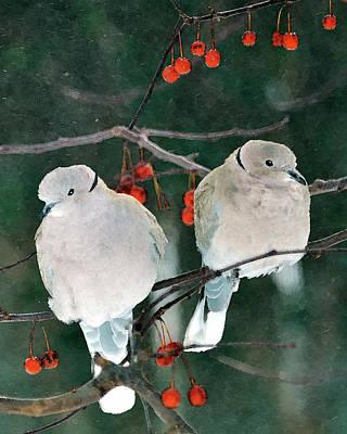 Dove Digital Art - Winter Doves by Betty LaRue