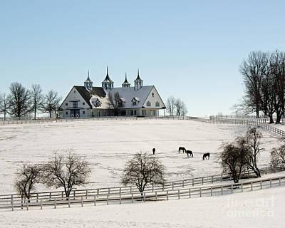 Kentucky Horse Park Photograph - Winter Dream by Roger Potts